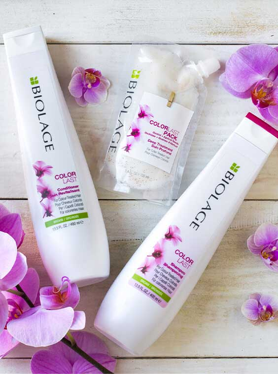 ColorLast Hair Care For Colored Hair | Biolage