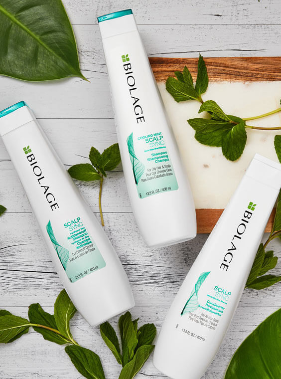 ScalpSync Anti-Dandruff Hair Products | Biolage