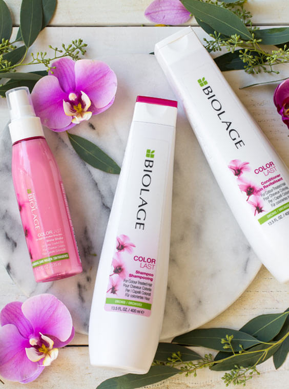 Natural Hair Care And Hair Styling Products Biolage
